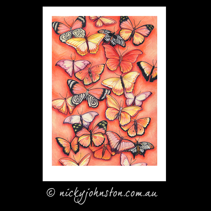 orange-butterfly-giclee-print-nicky-johnston