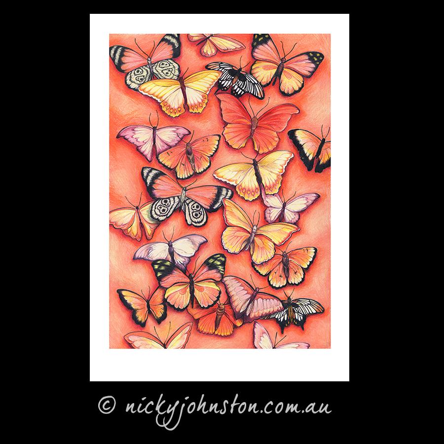 orange-butterfly-giclee-print-nicky-johnston